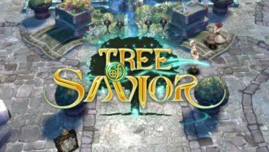 Photo of Tree of Savior: Dicas, Truques e Problemas no servidor SA