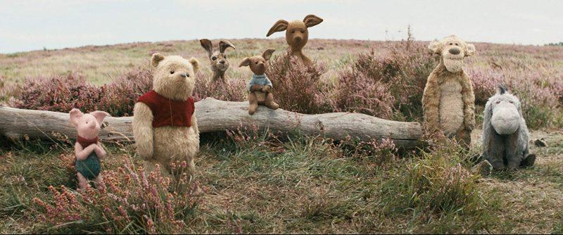 Leitão (Piglet), Puff (Winnie the Pooh), Coelho (um animal de verdade e não de pelúcia), os Cangurus, Tigrão (Tigger) e Bisonho (Eeyore)