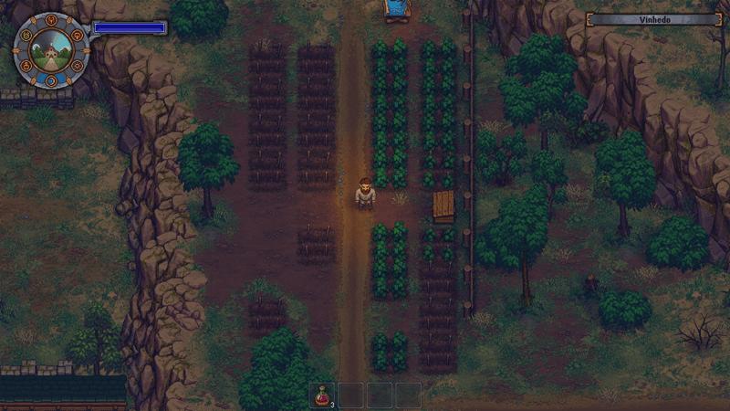 Plantação de Uva em Graveyard Keeper
