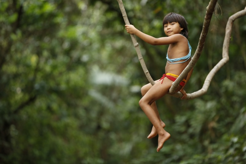A bela fotografia de Guerreiros da Floresta