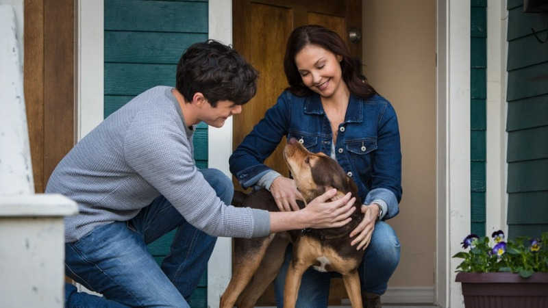 Bella e sua família