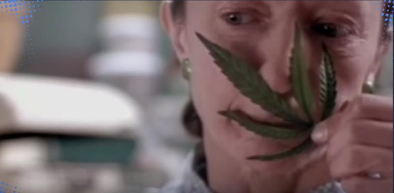 maconha-filme-cambly