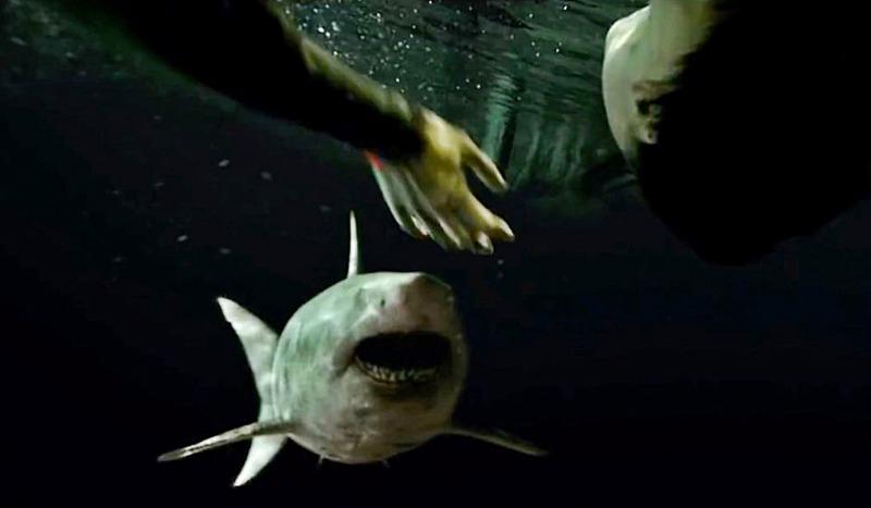 O tubarão de Medo Profundo: O Segundo Ataque