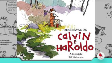 Photo of Desbravando Calvin e Haroldo – A Exposição Bill Watterson